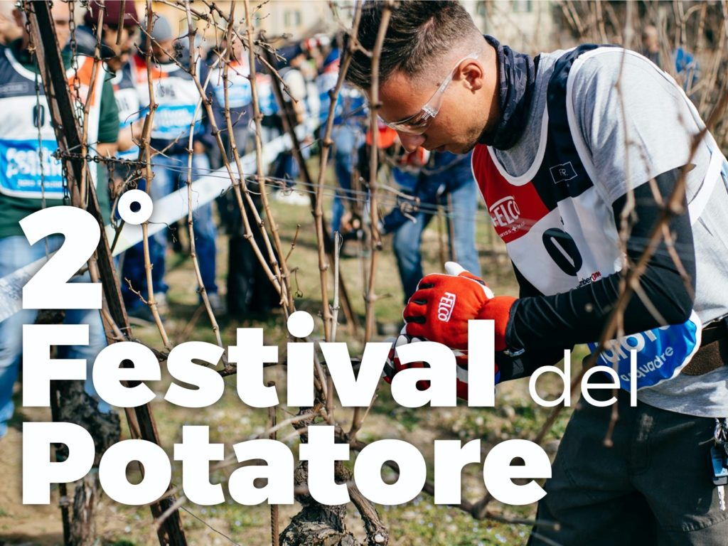 festival potatore