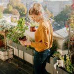 fiori sul terrazzo